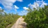 21695 Asturias Road - Photo 23