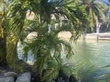 549 Caribbean Drive - Photo 24