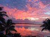 66 Palm Drive - Photo 9