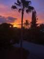 151 Coconut Palm Boulevard - Photo 42