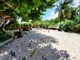 104 Sable Palm Lane - Photo 40