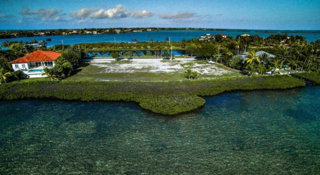17 Sea Lore Lane, Shark Key, FL 33040 (MLS #576751) :: The Coastal Collection Real Estate Inc.