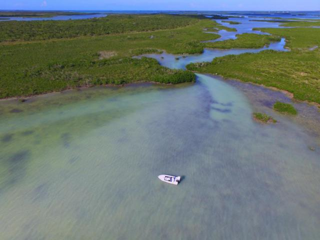 Lot 8 Little Knock-Em Down Key, Summerland Key, FL 33042 (MLS #578180) :: The Coastal Collection Real Estate Inc.