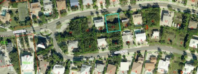 239 W Seaview Drive, Duck Key, FL 33050 (MLS #578305) :: KeyIsle Realty