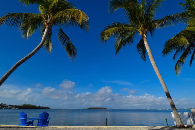 303 Ann Bonny Drive, Key Largo, FL 33037 (MLS #578413) :: Key West Luxury Real Estate Inc