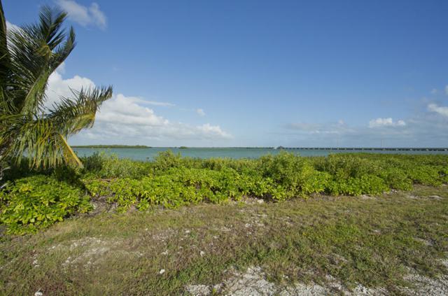 21 Sea Lore Lane, Shark Key, FL 33040 (MLS #578743) :: Jimmy Lane Real Estate Team