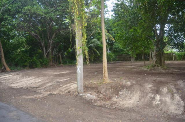 19620 Mayan Street, Sugarloaf Key, FL 33042 (MLS #578955) :: Jimmy Lane Real Estate Team