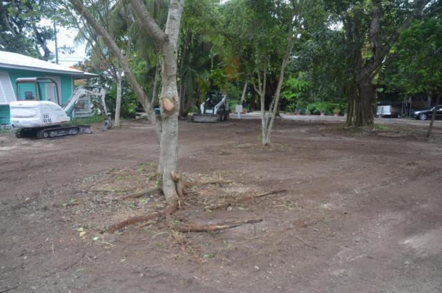 19590 Mayan Street, Sugarloaf Key, FL 33042 (MLS #578956) :: KeyIsle Realty