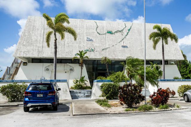 25000 Overseas Highway, Summerland Key, FL 33042 (MLS #579021) :: Jimmy Lane Real Estate Team