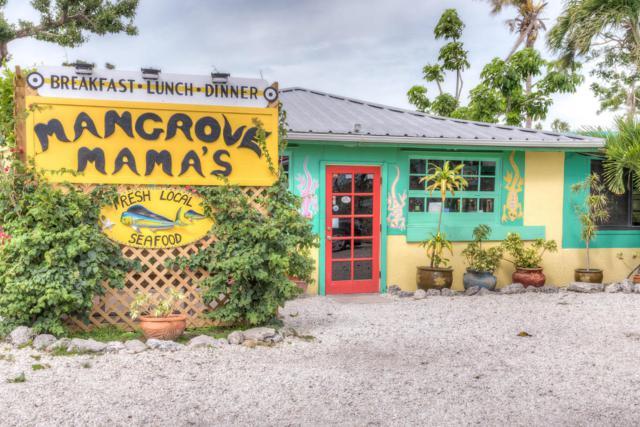 19991 Overseas Highway, Sugarloaf Key, FL 33042 (MLS #579163) :: Jimmy Lane Real Estate Team