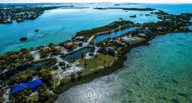 2 Cannon Royal Drive, Shark Key, FL 33040 (MLS #579199) :: Jimmy Lane Real Estate Team