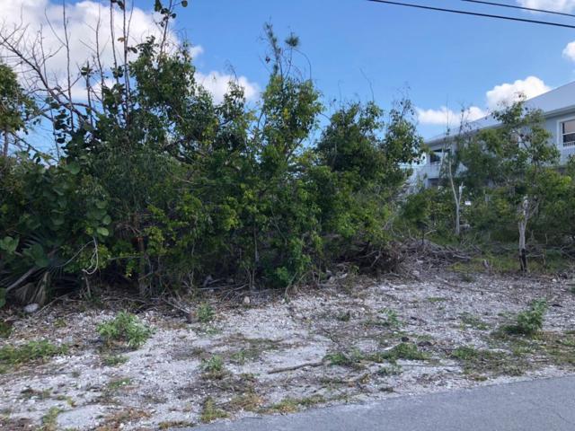 29532 Forrestal Avenue, Big Pine Key, FL 33043 (MLS #579693) :: Key West Luxury Real Estate Inc