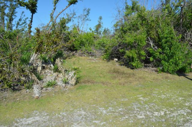 Newfound Boulevard, Big Pine Key, FL 33043 (MLS #579728) :: Buy the Keys