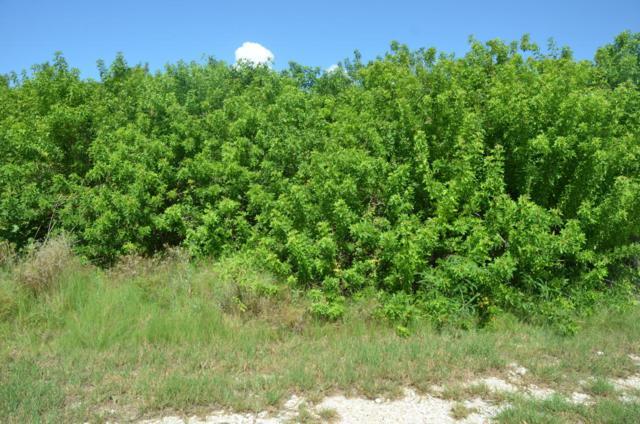 Basque Lane, Cudjoe Key, FL 33042 (MLS #579736) :: Key West Luxury Real Estate Inc