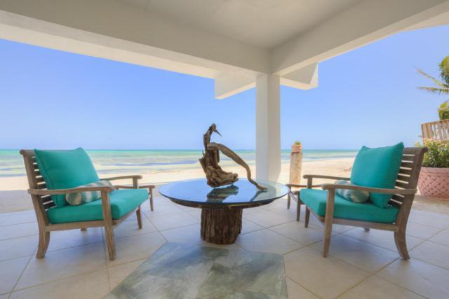 133 Sunset Drive, Lower Matecumbe, FL 33036 (MLS #579819) :: Key West Luxury Real Estate Inc