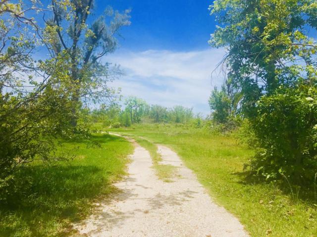 19088 Pelico Road, Sugarloaf Key, FL 33042 (MLS #580463) :: KeyIsle Realty