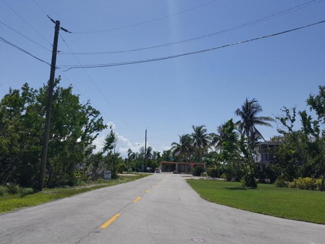 164 S Bahama Drive, Duck Key, FL 33050 (MLS #580846) :: KeyIsle Realty