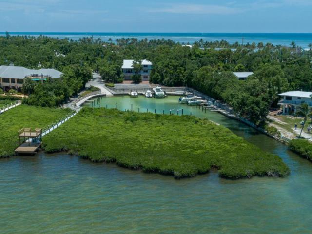 12 Flamingo Hammock Road, Upper Matecumbe Key Islamorada, FL 33036 (MLS #580895) :: KeyIsle Realty