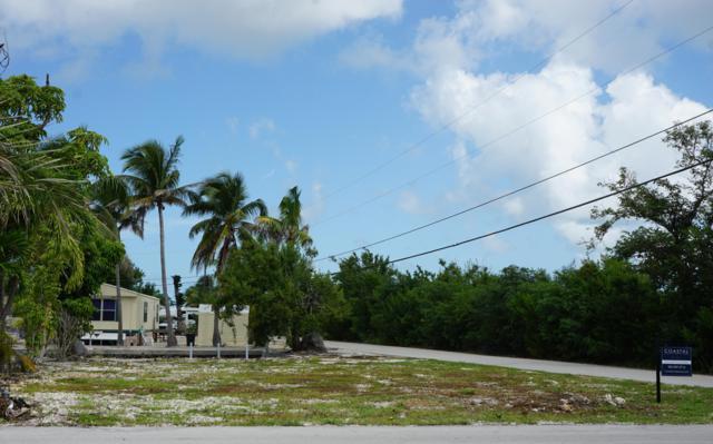 27995 Tarpon Terrace, Little Torch Key, FL 33042 (MLS #581886) :: Coastal Collection Real Estate Inc.