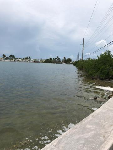 1250 Overseas Highway, Big Coppitt, FL 33040 (MLS #582337) :: Jimmy Lane Real Estate Team