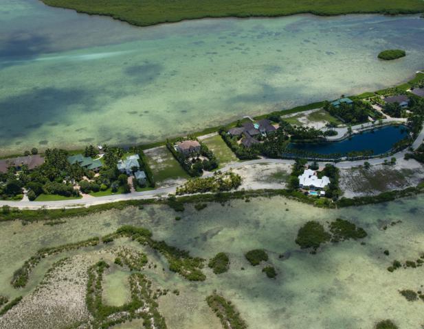 67 Cannon Royal Drive, Shark Key, FL 33040 (MLS #582954) :: Coastal Collection Real Estate Inc.