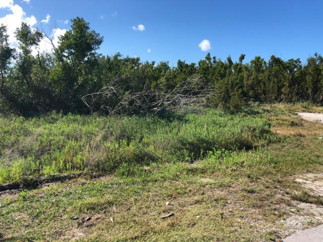 Lot 15 Basque Lane, Cudjoe Key, FL 33042 (MLS #584235) :: Jimmy Lane Real Estate Team