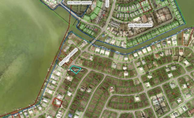 21 N Bahama Drive, Duck Key, FL 33050 (MLS #584333) :: Jimmy Lane Real Estate Team