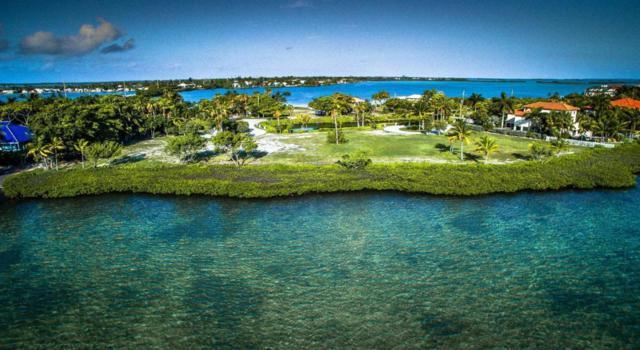 3 Tiburon Circle, Shark Key, FL 33040 (MLS #584991) :: Jimmy Lane Home Team