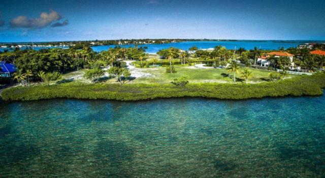 5 Tiburon Circle, Shark Key, FL 33040 (MLS #584992) :: Jimmy Lane Real Estate Team