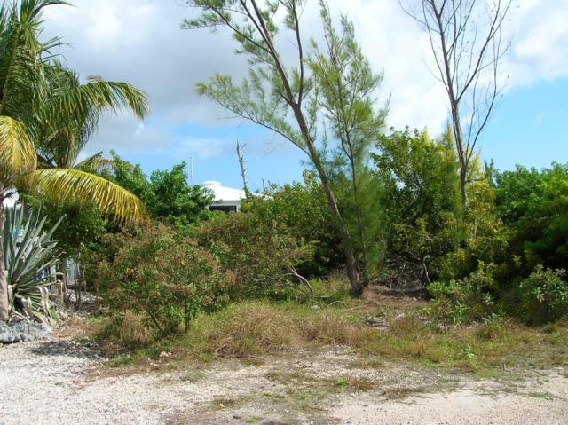 29669 Ranger Avenue, Big Pine Key, FL 33043 (MLS #585064) :: Key West Luxury Real Estate Inc