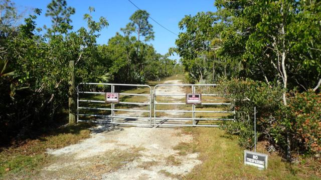 501 W Sandy Circle, Big Pine Key, FL 33043 (MLS #585194) :: Key West Luxury Real Estate Inc