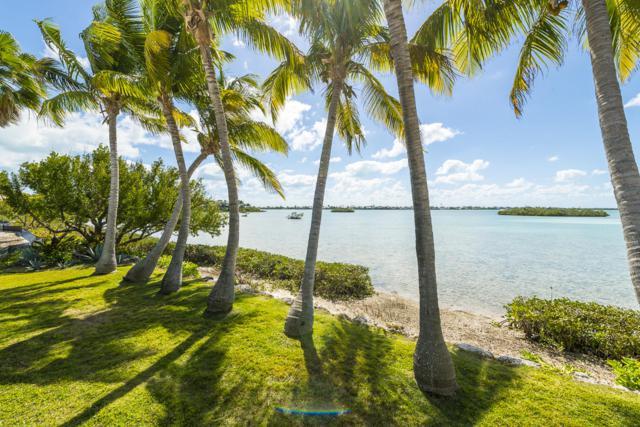 48 Cannon Royal Drive, Shark Key, FL 33040 (MLS #585381) :: Jimmy Lane Home Team