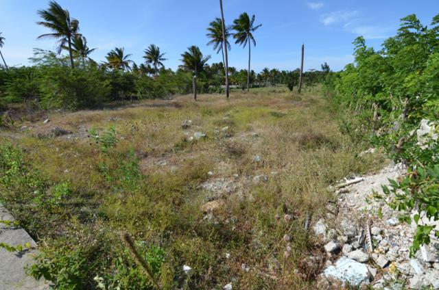 Maimon, Other, FL 00000 (MLS #585610) :: Coastal Collection Real Estate Inc.
