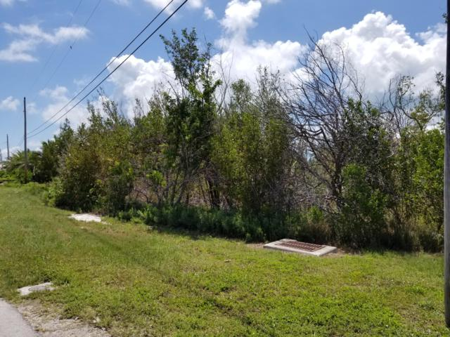 Lot 31 S Bahama Drive, Duck Key, FL 33050 (MLS #585759) :: Conch Realty