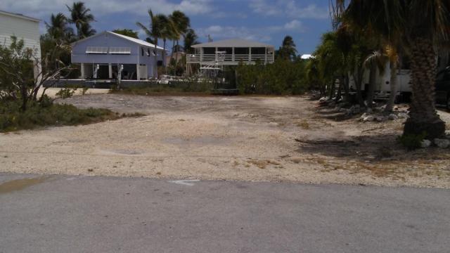 Martinique Lane, Ramrod Key, FL 33042 (MLS #585811) :: Jimmy Lane Real Estate Team
