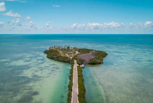 79775 Overseas Highway, Upper Matecumbe Key Islamorada, FL 33036 (MLS #585835) :: Doug Mayberry Real Estate