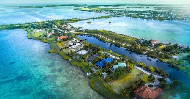 60 Cannon Royal Drive, Shark Key, FL 33040 (MLS #586007) :: Jimmy Lane Real Estate Team