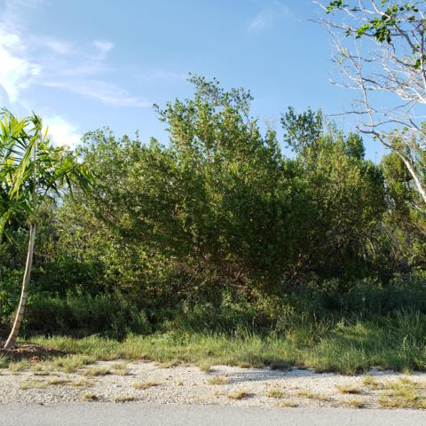 195 S Indies Drive, Duck Key, FL 33050 (MLS #586695) :: Vacasa Florida LLC