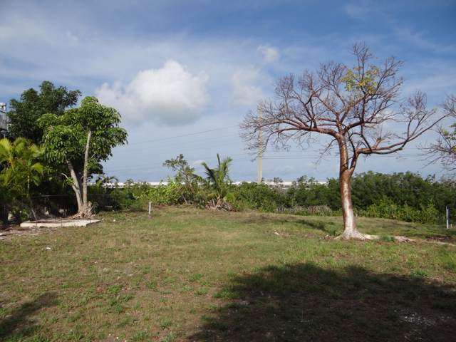 Lot 3 Blue Water Drive, Saddlebunch, FL 33040 (MLS #587343) :: Brenda Donnelly Group
