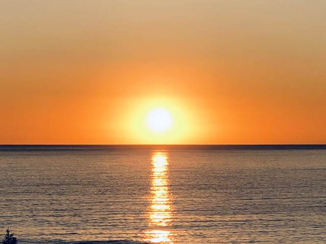62900 Overseas Highway #53, Conch Key, FL 33050 (MLS #587593) :: Key West Luxury Real Estate Inc