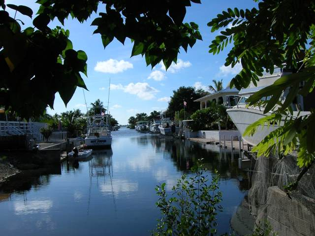80 Ships Way, Big Pine Key, FL 33043 (MLS #587870) :: Coastal Collection Real Estate Inc.