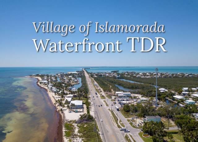 1 TDR, Upper Matecumbe Key Islamorada, FL 33036 (MLS #587874) :: Jimmy Lane Home Team