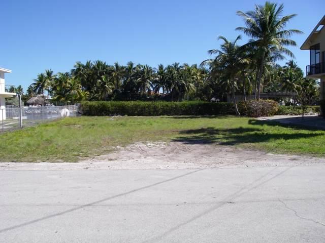 113 Sandy Cove Avenue, Lower Matecumbe, FL 33036 (MLS #588500) :: Jimmy Lane Home Team