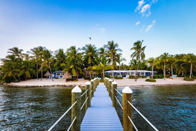 80221 Overseas Highway, Upper Matecumbe Key Islamorada, FL 33036 (MLS #588502) :: KeyIsle Realty