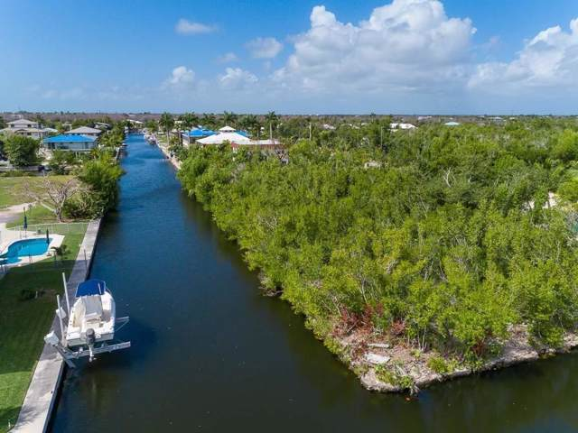 30894 Palm Drive, Big Pine Key, FL 33043 (MLS #588988) :: Key West Luxury Real Estate Inc
