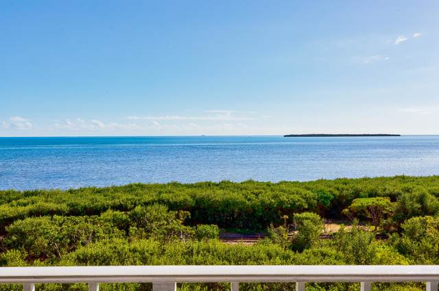 500 Burton Drive #4409, Key Largo, FL 33070 (MLS #589072) :: Key West Luxury Real Estate Inc