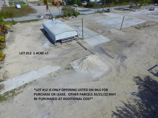 30230 Paradise Lane, Big Pine Key, FL 33043 (MLS #589158) :: KeyIsle Realty