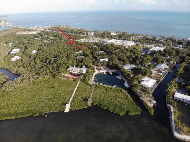 27 Flamingo Hammock Road, Upper Matecumbe Key Islamorada, FL 33036 (MLS #589366) :: Coastal Collection Real Estate Inc.