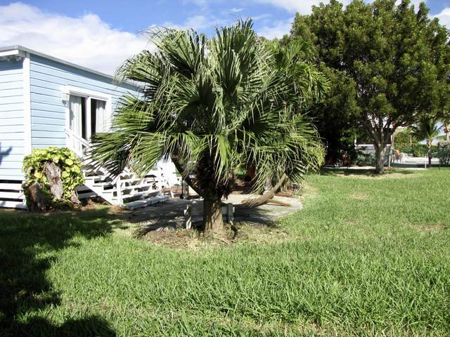 453 Barry Avenue, Little Torch Key, FL 33042 (MLS #589597) :: Jimmy Lane Home Team