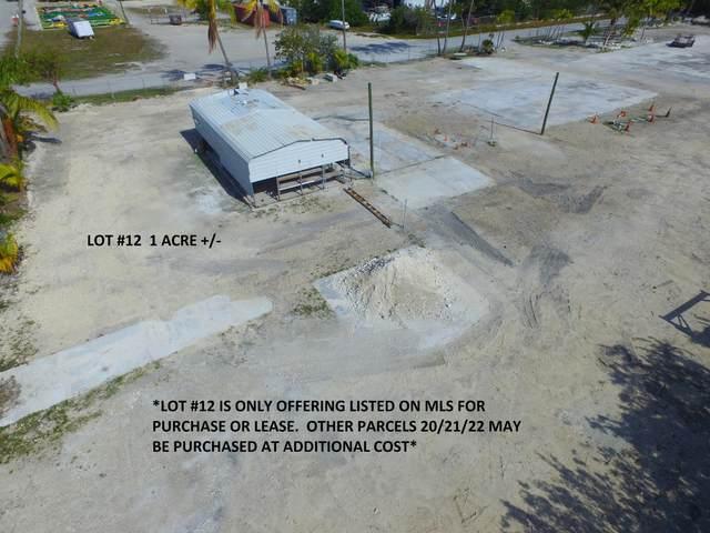 30230 Paradise Lane, Big Pine Key, FL 33043 (MLS #589716) :: Brenda Donnelly Group